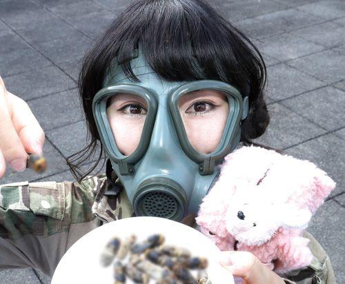 美味!オオスズメバチ【帰ってきた!! らんまるぽむぽむのサバイバルクッキング】